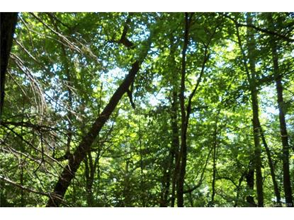 Lot 509 Multiflora Way Waynesville, NC MLS# 3510780