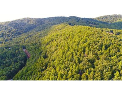 3421 South Peak Lane Morganton, NC MLS# 3513799