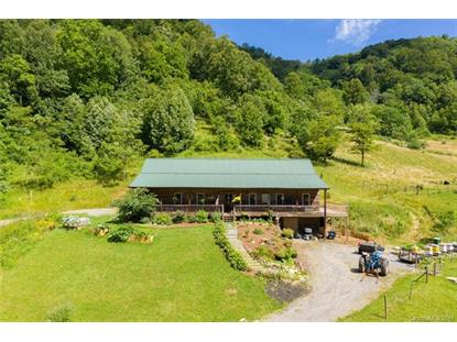 1150 Fred Holcombe Road Mars Hill, NC MLS# 3522960