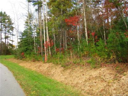 tbd Springhouse Trail Brevard, NC MLS# 3590086