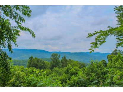 000 Laurel Park Highway Hendersonville, NC MLS# 3600804