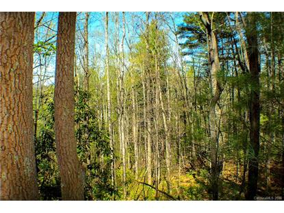 30.09 Acres Mountainbrook Road Asheville, NC MLS# 3610153