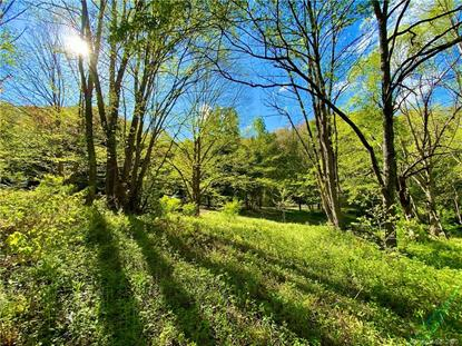 TBD Big Laurel Road Waynesville, NC MLS# 3620991