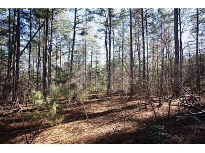 2455 W Paradise Harbor Drive Connelly Spg, NC MLS# 3625230