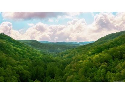000 Line Runner Ridge Highway Rosman, NC MLS# 3628787
