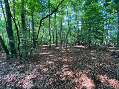 Lot 13 Cantrell Mountain Road Brevard, NC MLS# 3637870
