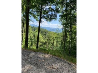 333 Sleepy Hollow Drive Waynesville, NC MLS# 3641222