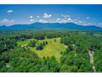 14 Holly Ridge Lane Tryon, NC MLS# 3643661