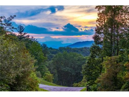 TBD Bartrams Walk Drive Asheville, NC MLS# 3643764