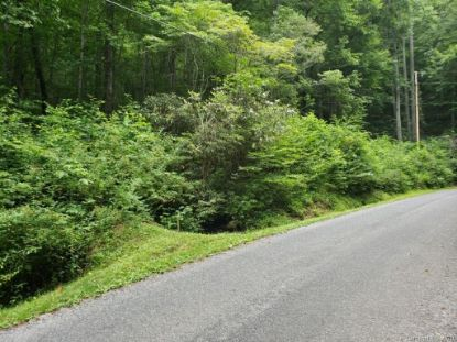 LOTS 428 & 428A Chestnut Forest Road Fairview, NC MLS# 3645651