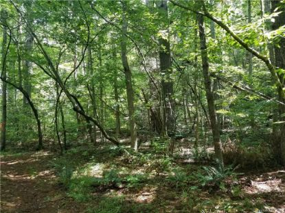 583 Ashley Bend Trail Hendersonville, NC MLS# 3645951