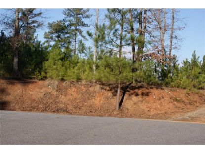 1185 Palomino Beach Lane Connelly Spg, NC MLS# 3646514