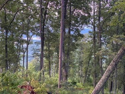 0000 Windswept Pass Lake Lure, NC MLS# 3647103