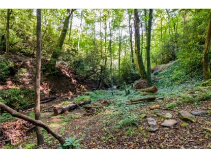 TBD Ballard Creek Road Fairview, NC MLS# 3648515