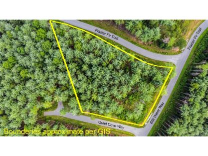TBD Frasier Fir Trail Nebo, NC MLS# 3649517