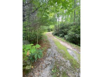 227 Horseshoe Cove Road Lake Toxaway, NC MLS# 3654812