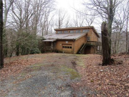 150 Squirrel Corn Lane Sugar Mountain, NC MLS# 3662100