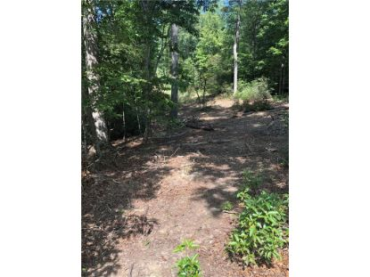 00 Hunting Country Road Tryon, NC MLS# 3664702