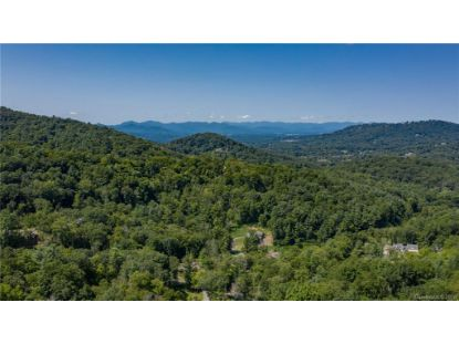 TBD Bartrams Walk Drive Asheville, NC MLS# 3666613