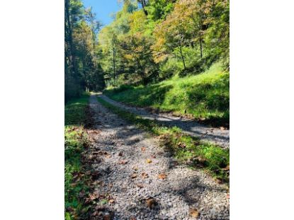 00 Chad Crawford Road Sylva, NC MLS# 3668099