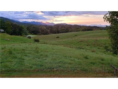 60 Dix Creek Chapel Road Asheville, NC MLS# 3668387
