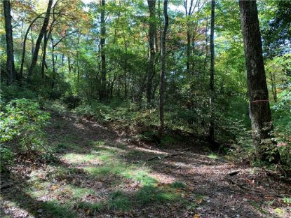 Lot 28 Big Hill Road Brevard, NC MLS# 3671082