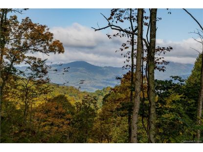 299 High Hickory Trail Swannanoa, NC MLS# 3672334