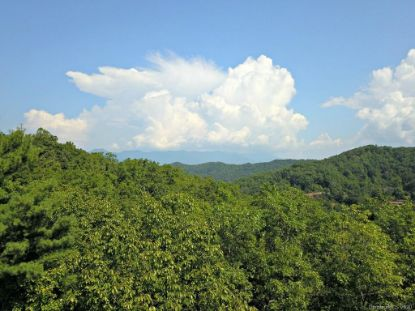 0 Mountain Forest Estate Sylva, NC MLS# 3675280