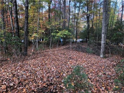61 Old Hickory Trail Hendersonville, NC MLS# 3676084