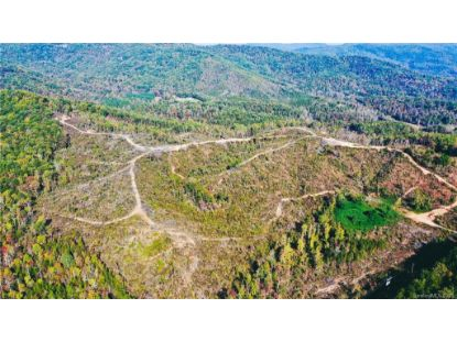 0 Bills Creek Road Lake Lure, NC MLS# 3676839