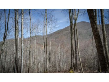 1335 E Clubhouse Road Sylva, NC MLS# 3680650
