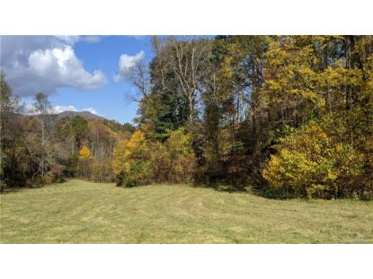 Lot #1 S Lindon Cove Road Candler, NC MLS# 3681581