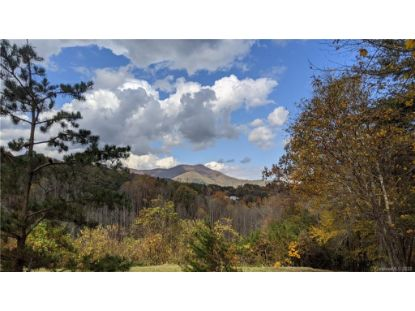 Lot #6 S Lindon Cove Road Candler, NC MLS# 3681731