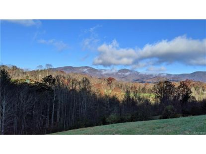 Lot #10 S Lindon Cove Road Candler, NC MLS# 3681766