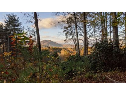 Lot #18 S Lindon Cove Road Candler, NC MLS# 3684957