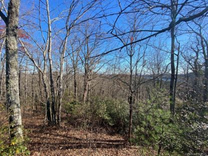 TBD Little Elbow Mountain Road Lake Toxaway, NC MLS# 3685381