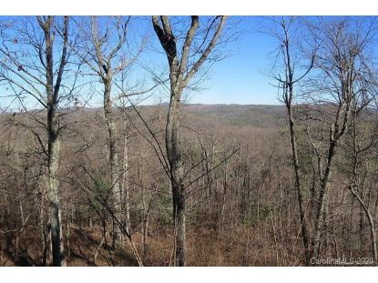 212 W Chestnut Ridges Road Brevard, NC MLS# 3694129