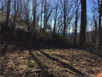 TBD Red Oak Forest Road Fairview, NC MLS# 3695176