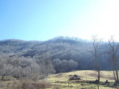 00 Crabtree Mountain Road Canton, NC MLS# 3699387