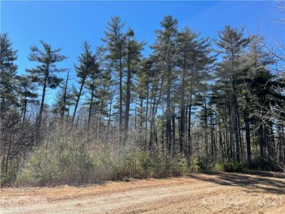 TBD W Blue Ridge Road Flat Rock, NC MLS# 3712732