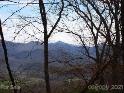 00 Porters Ridge Road Canton, NC MLS# 3727379