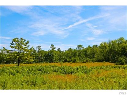 113 Popple Swamp ROAD Cornwall, CT MLS# 99154598
