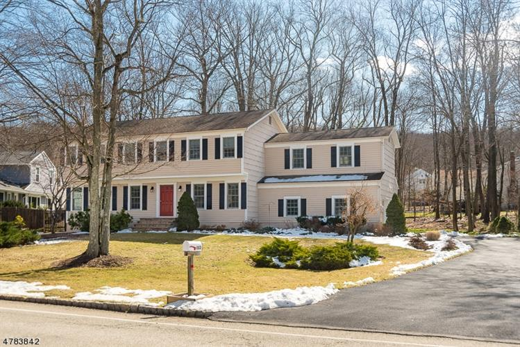102 Meadow Brook Rd, Randolph, NJ 07869