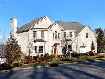 14 Salmon Ct , Mount Olive, NJ