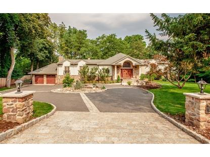 20 Knickerbocker Rd , Tenafly, NJ