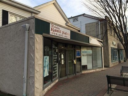 46-48 W SOMERSET ST , Raritan, NJ