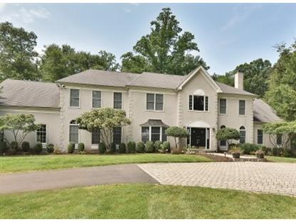7 HOWELL DR , Chester, NJ
