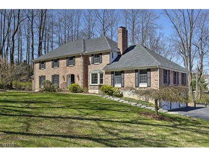 4 Apgar Way , Tewksbury Twp, NJ