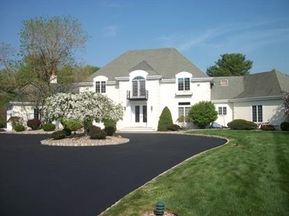 35 Meadow Lane  Harding Twp., NJ MLS# 3302141