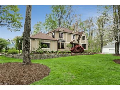 18 Ironwood Rd  Morris Township, NJ MLS# 3302756